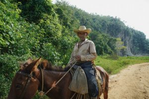 Cuban Cigars and Horseback Riding in Viñales, Cuba