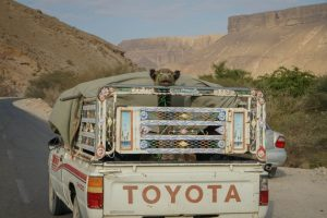 Journey through Yemen – Yemen's War and Travel