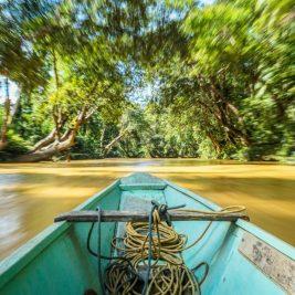 River Skrang and the Batang Ai, Sarawak
