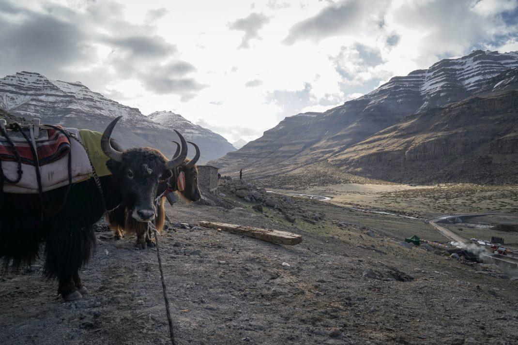 The Mount Kailash Kora – Tibet
