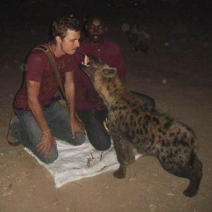Feeding Wild Hyenas in Harar, Ethiopia