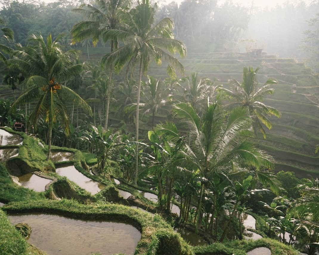 Traveling the Non-Touristy Side of Bali