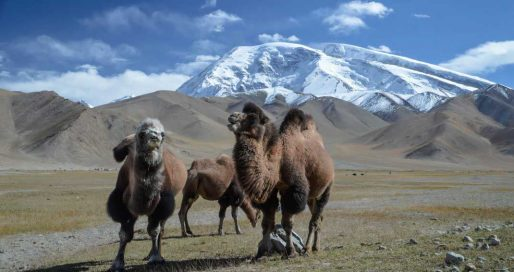 Xinjiang Travel Blog Xinjiang Travel Guide