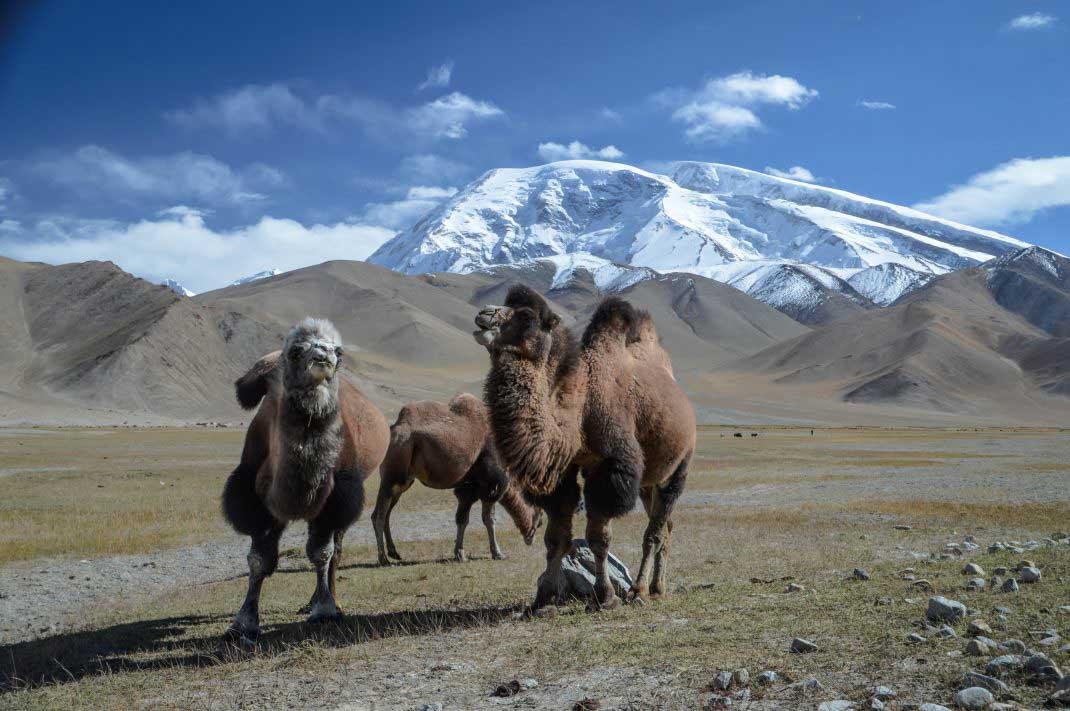 Xinjiang Travel Blog Xinjiang Travel Guide