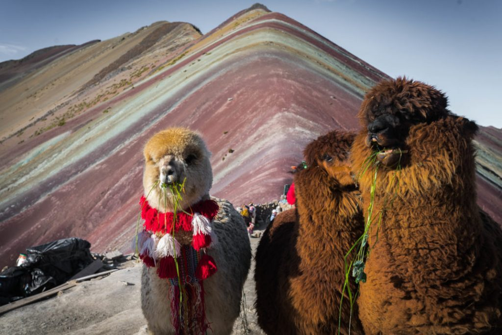Best Trips from Cusco – Peru's Andean Wonderland